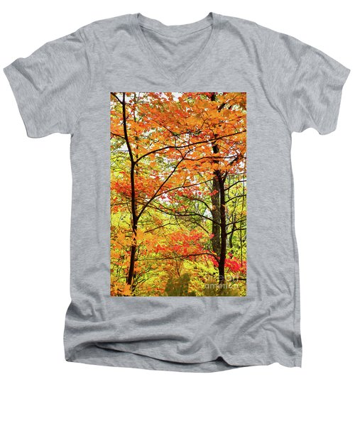 Autumn Splendor Fall Colors Leaves And Trees Ap Men's V-Neck T-Shirt