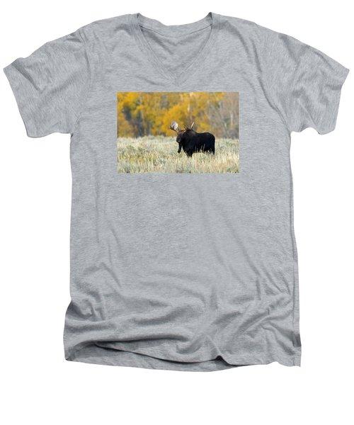 Autumn Splendor II Men's V-Neck T-Shirt