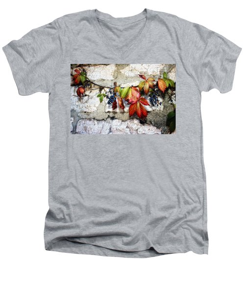 Autumn Vines Men's V-Neck T-Shirt