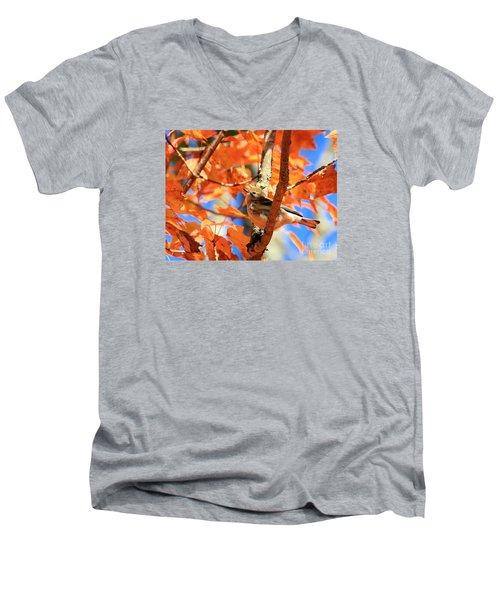 Autumn Warbler Men's V-Neck T-Shirt