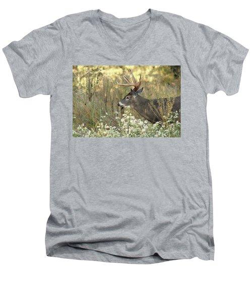 Autumn Whitetail In The Smokies Men's V-Neck T-Shirt by TnBackroadsPhotos