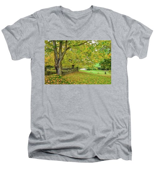 Autumn Wonderland Men's V-Neck T-Shirt