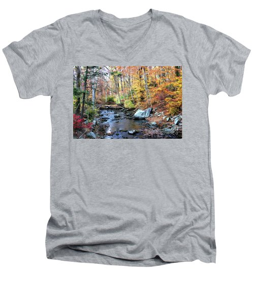 Autumn Woodlands Men's V-Neck T-Shirt
