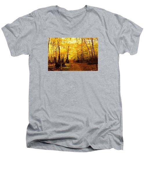 Autumns Blaze Men's V-Neck T-Shirt by Steven Clipperton