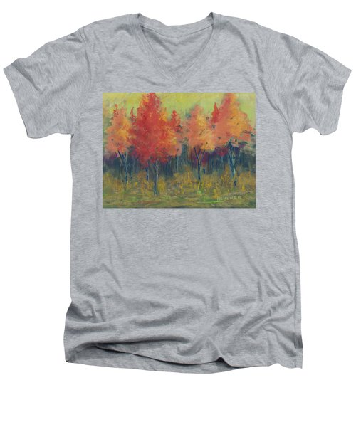 Autumn's Glow Men's V-Neck T-Shirt by Lee Beuther