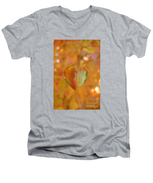Autumn's Golden Splendor Men's V-Neck T-Shirt