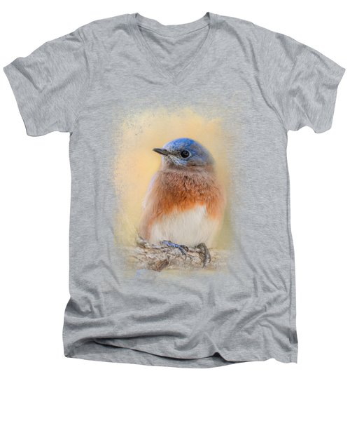 Autumn's Treasure Men's V-Neck T-Shirt by Jai Johnson