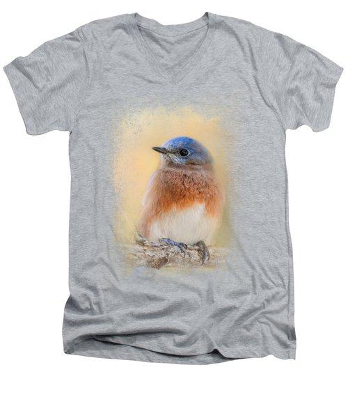 Autumn's Treasure Men's V-Neck T-Shirt