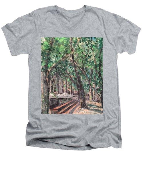 Avignon Men's V-Neck T-Shirt