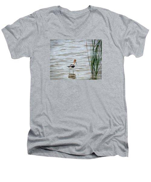 Avocet  Men's V-Neck T-Shirt