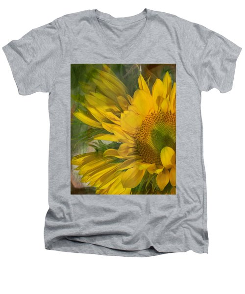 Awash In Sun Men's V-Neck T-Shirt