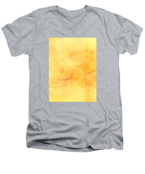 Azalea Impressions Men's V-Neck T-Shirt by Catherine Alfidi