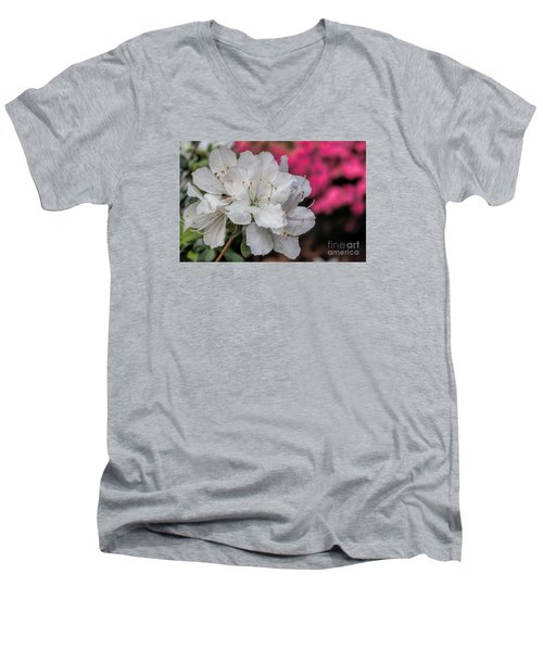 Men's V-Neck T-Shirt featuring the photograph Azaleas In Turtle Creek by Diana Mary Sharpton