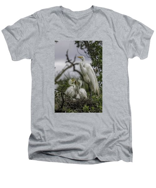 Babies In The Nest Men's V-Neck T-Shirt