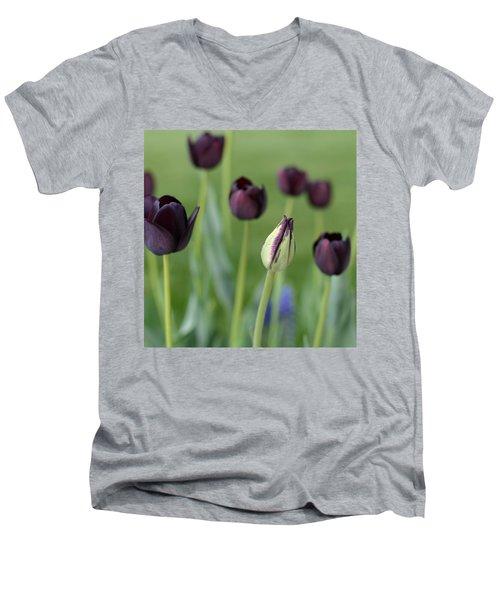 Baby Bloomer Men's V-Neck T-Shirt by Linda Mishler