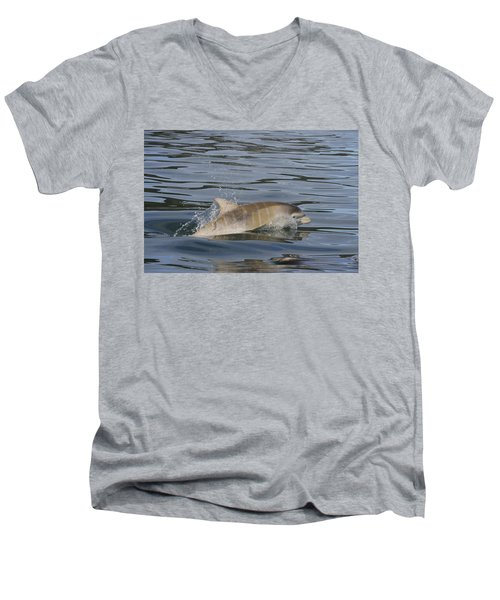 Baby Bottlenose Dolphin - Scotland  #35 Men's V-Neck T-Shirt