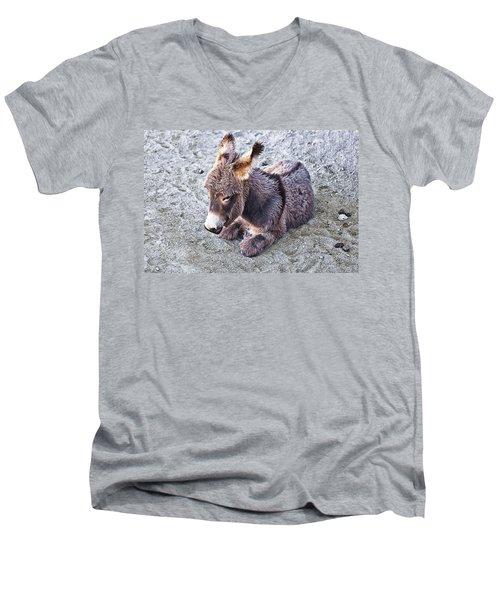 Baby Burro Men's V-Neck T-Shirt
