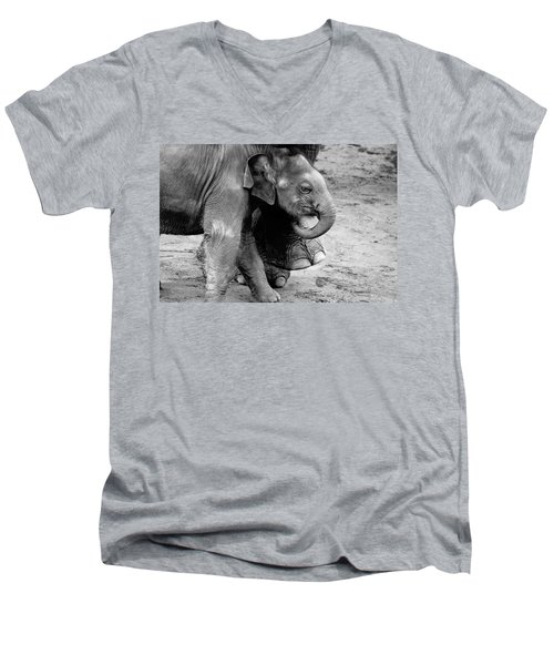 Baby Elephant Security Men's V-Neck T-Shirt by Wes and Dotty Weber