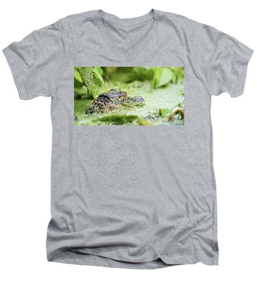 Baby Gator Men's V-Neck T-Shirt
