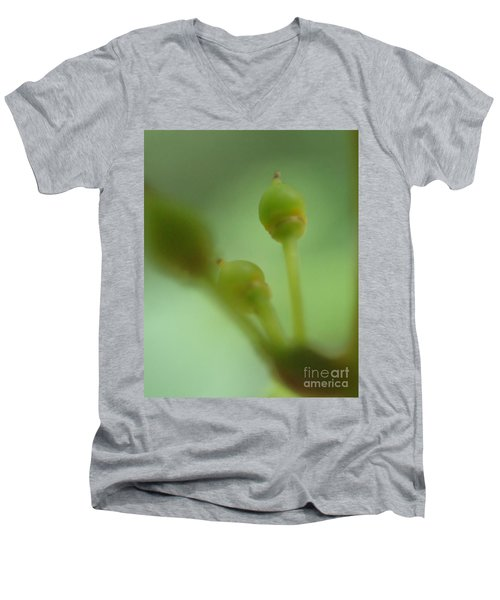 Baby Grapes Men's V-Neck T-Shirt