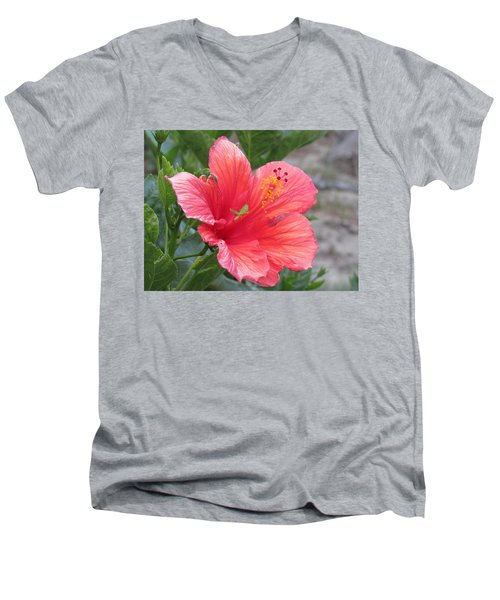 Men's V-Neck T-Shirt featuring the photograph Baby Grasshopper On Hibiscus Flower by Nancy Nale