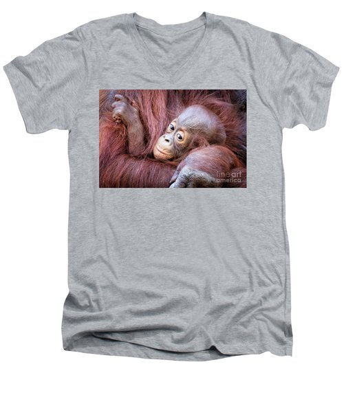 Baby Orangutan Men's V-Neck T-Shirt