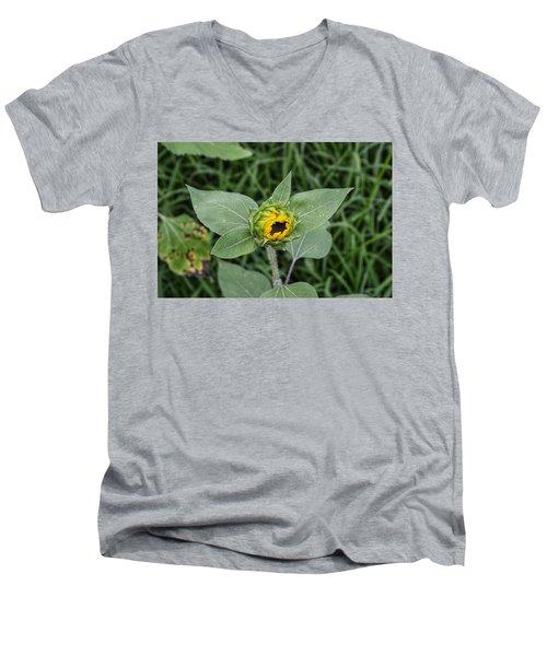 Baby Sunflower  Men's V-Neck T-Shirt