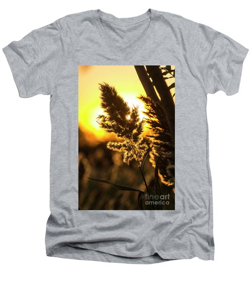 Men's V-Neck T-Shirt featuring the photograph Backlit By The Sunset by Zawhaus Photography