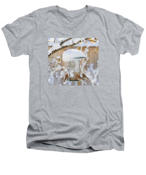 Backyard Birds Men's V-Neck T-Shirt