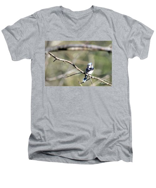 Backyard Blue Jay Men's V-Neck T-Shirt