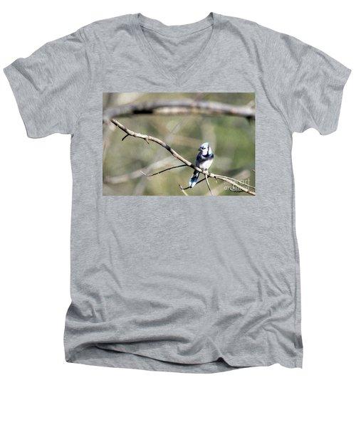Backyard Blue Jay Oil Men's V-Neck T-Shirt