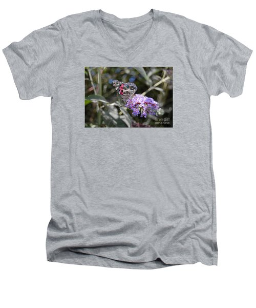Backyard Buckeye Butterfly Men's V-Neck T-Shirt