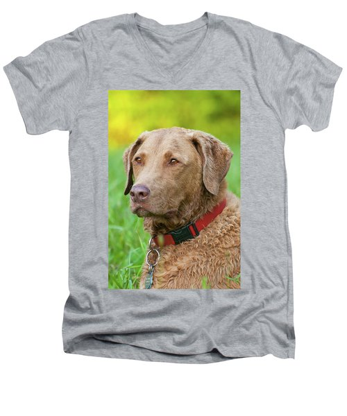 Men's V-Neck T-Shirt featuring the photograph Bailee 1149 by Guy Whiteley
