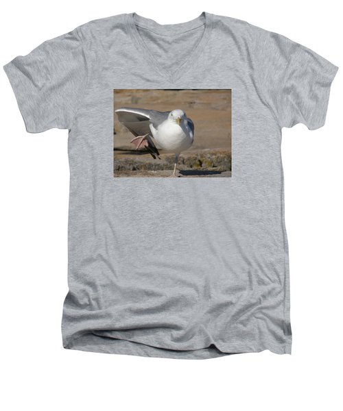 Balance Men's V-Neck T-Shirt by Jewels Blake Hamrick