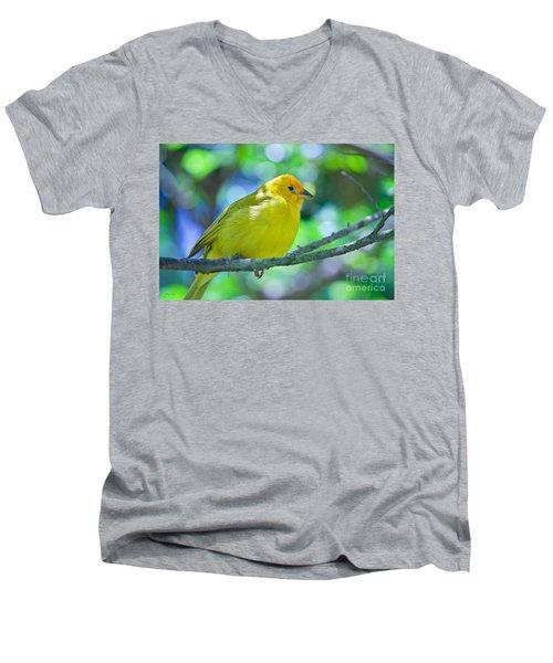 Balance Of Nature Edition 3 Men's V-Neck T-Shirt by Judy Kay