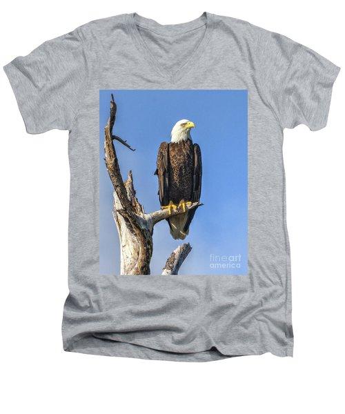 Bald Eagle 6366 Men's V-Neck T-Shirt