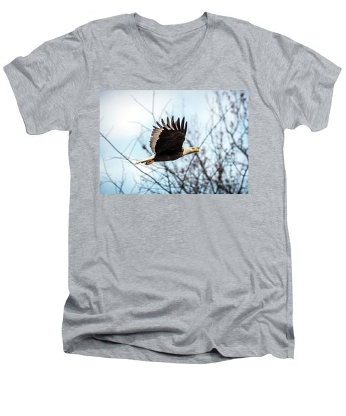 Bald Eagle Flight Men's V-Neck T-Shirt