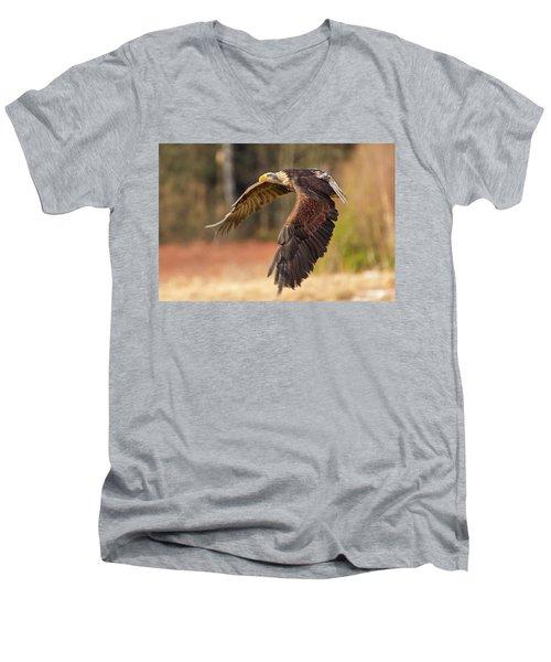 Bald Eagle In Flight Men's V-Neck T-Shirt