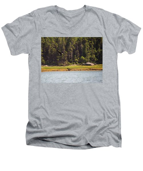 Bald Eagle In Flight Men's V-Neck T-Shirt by Trace Kittrell