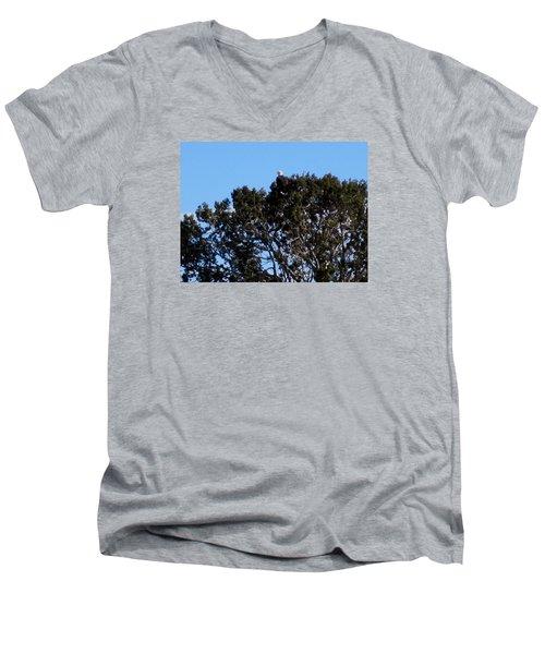 Men's V-Neck T-Shirt featuring the photograph Bald Eagle In Juniper by Deborah Moen
