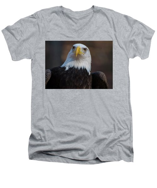 Bald Eagle Looking Right Men's V-Neck T-Shirt
