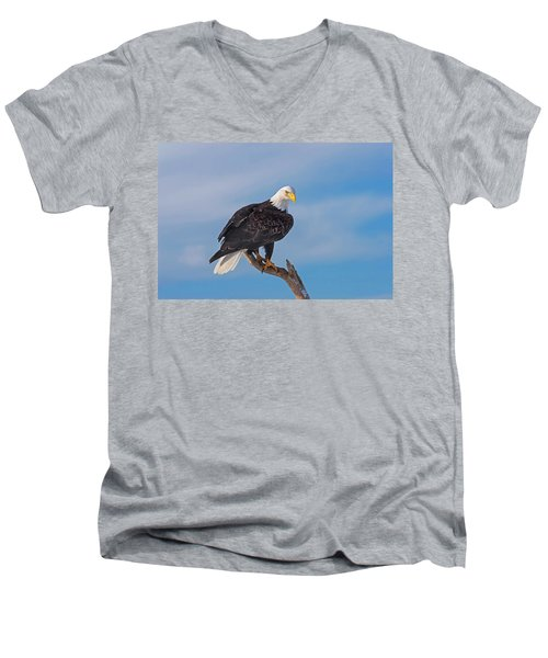 Bald Eagle Majesty Men's V-Neck T-Shirt