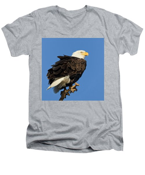 Bald Eagle Squared Men's V-Neck T-Shirt