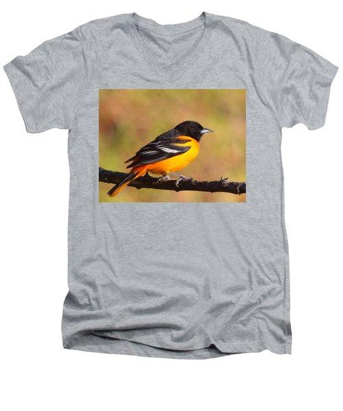 Baltimore Oriole IIi Men's V-Neck T-Shirt