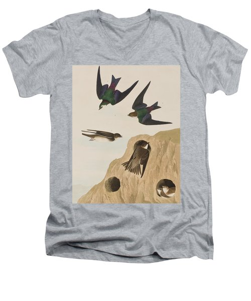 Bank Swallows Men's V-Neck T-Shirt by John James Audubon