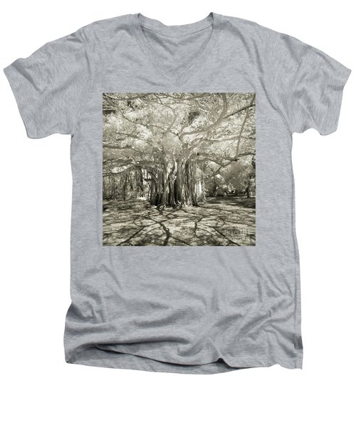 Banyan Strangler Fig Tree Men's V-Neck T-Shirt