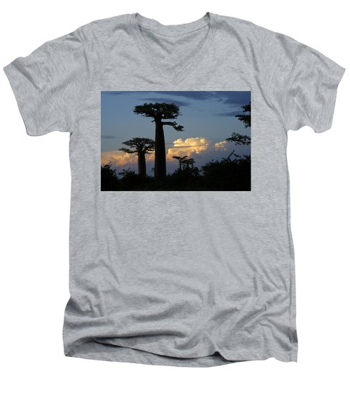 Baobabs And Storm Clouds Men's V-Neck T-Shirt