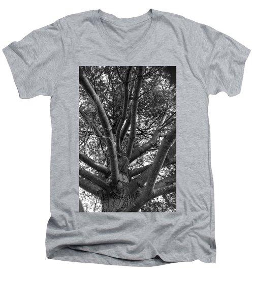 Bare Tree Men's V-Neck T-Shirt