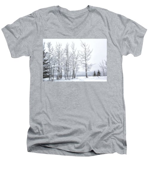 Bare Trees In Winter Men's V-Neck T-Shirt