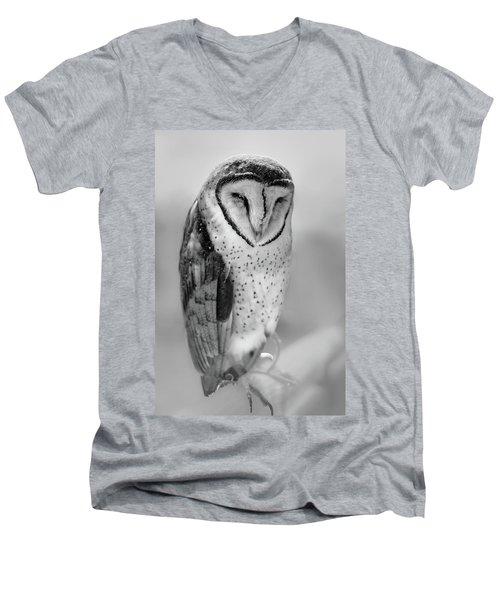 Barn Owl II Men's V-Neck T-Shirt